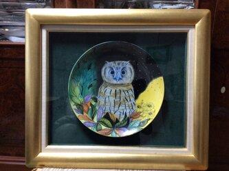 フクロウの陶板画の画像