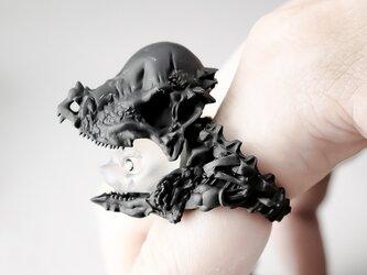 """猫に恐竜""""パキケファロサウルス"""" / Cat in Dinosaur """"Pachycephalosaurus"""" Ringの画像"""