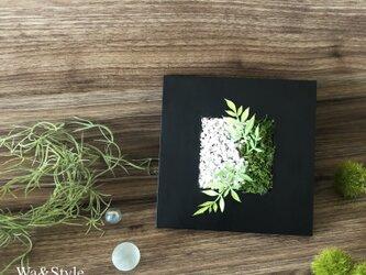 ◆New2020!観葉グリーン・インテリアアート◆和モダン苔砂・壁掛けにもの画像