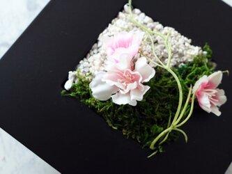 ◆New2020!観葉グリーンインテリア◆和モダン桜・壁掛けにもの画像