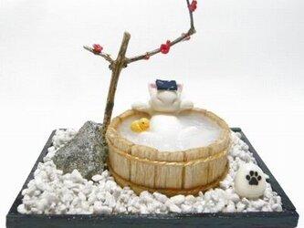 にゃんこのしっぽ〇のんびり梅の湯〇猫湯〇ミニチュア〇ドールハウス〇白猫の画像