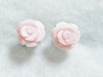 (1点もの)クイーンコンクシェルの薔薇ピアス(8mm・チタンポスト)の画像