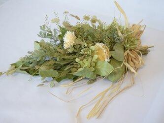 ミモザアカシアの春風スワッグの画像