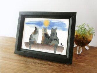 猫 *月夜*の画像