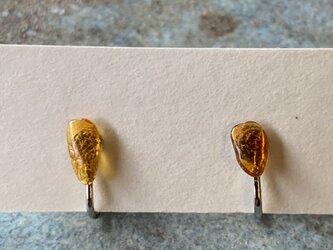 琥珀(アンバー)のイヤリングの画像