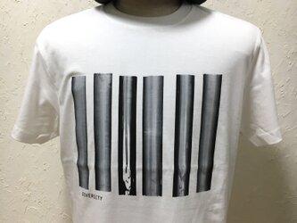 ダイバーシティ・ホワイト・Tシャツ【2TN-003-WT】の画像