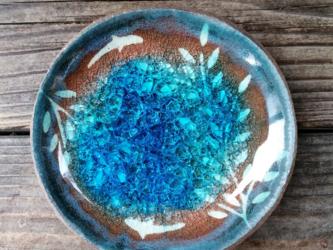 空色みずたまり豆皿 枝葉と魚 no. 6の画像