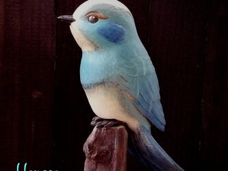青色の鳥 no.11の画像