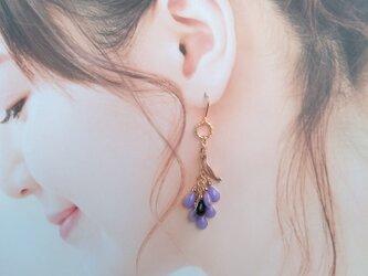 雫のぶどうピアス/イヤリング (紫&黒) ;   grape drops earringの画像