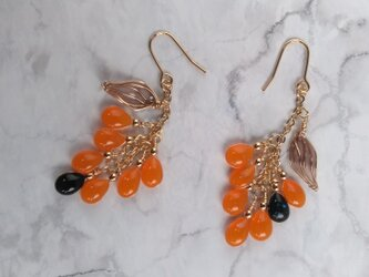 雫のナナカマドピアス (オレンジ色&黒) ; rowan drop-earringの画像