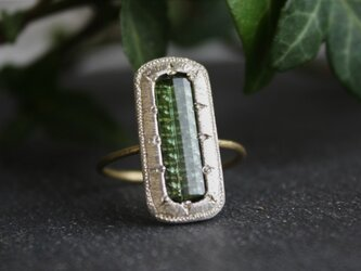 Fragment Green Tourmaline Ring FMR-17の画像