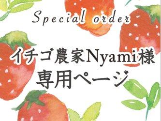 イチゴ農家Nyami様専用ページの画像