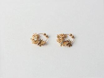 rosemary【no hole pierce】の画像