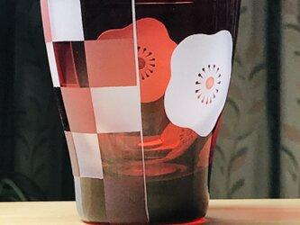 白梅市松フリーグラス 無色×赤 (1個)の画像