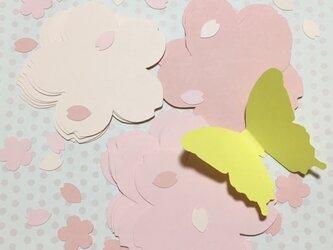 桜の花びら コメントカードセット *コメカ* 21枚セットの画像