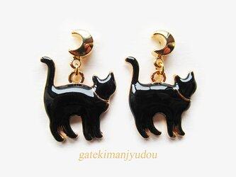 三日月と黒猫のピアスの画像