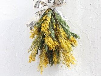 早咲きミモザのスワッグの画像