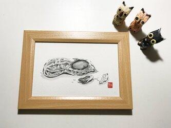 墨絵原画「落花生」の画像