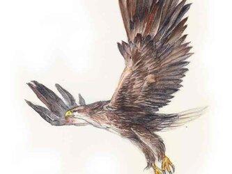 高級和紙印刷03 「飛翔」の画像