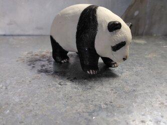 200gAs パンダの画像