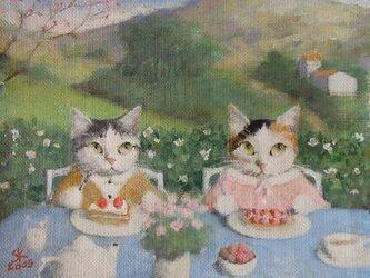 ショ―トケーキ/春の画像