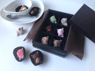 選べるチョコレートみたいな猫さん6匹セットの画像