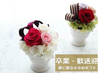 New◆春に贈ろう飾ろう!小さなバラのプリザーブドフラワーアレンジ(ピンク)の画像