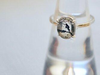 デンドリティッククォーツのリング の画像