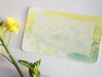 メッセージカード【菜の花】の画像
