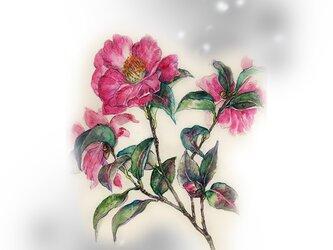 高級和紙印刷04  寒中山茶花の画像