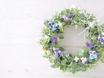 再販3 紫のすみれ花 小春リース :リース グリーン むらさき 春の画像