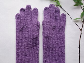 A様ご依頼/すみれ色の手袋の画像