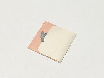 【ひょっこりこにゃんこ ぽち袋】サバトラさん ・3枚入りの画像