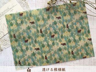 透ける模様紙【ツキノワグマの森】の画像