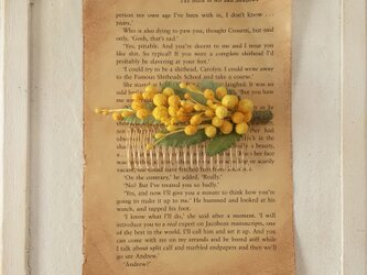 染め花のミモザのコームの画像