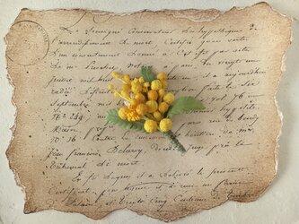 染め花のミモザのポニーフックの画像