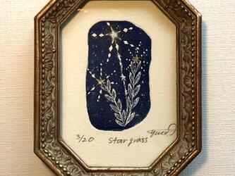 銅版画「star grass」の画像