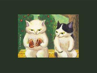 カマノレイコ オリジナル猫ポストカード「はんぶんこ」2枚セットの画像