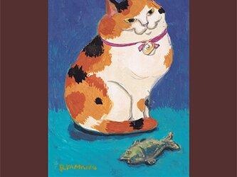 カマノレイコ オリジナル猫ポストカード「さかな」2枚セットの画像