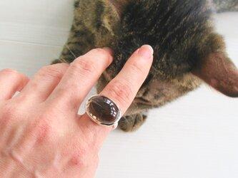 [指で育てるペット]スモーキークォーツ×silverの画像