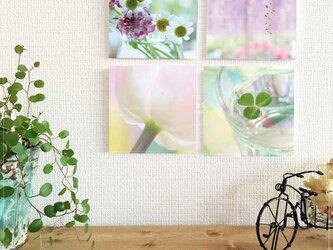 4枚のフォトパネルセレクション*【春色シリーズ】の画像
