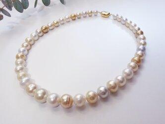 白蝶真珠 マルチカラーネックレスの画像