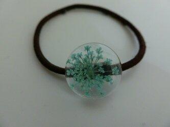 透け感、ミラクルpremiumビューティ桐谷ビーム好印象の髪飾り水色の画像