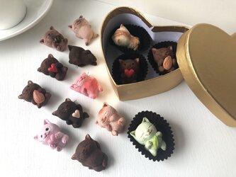 選べるチョコレートみたいな猫さんトリオ金ボックスの画像