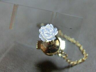 「白蝶貝」 ピンの画像