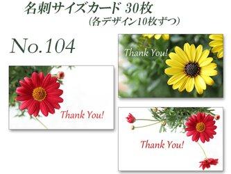 No.104 赤いマーガレットと黄色のオステオスペルマム  名刺サイズサンキューカード   30枚の画像