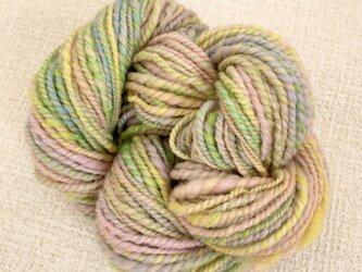 手紡ぎ双糸[春色ミックス]の画像