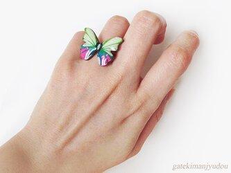 胡蝶のリングの画像