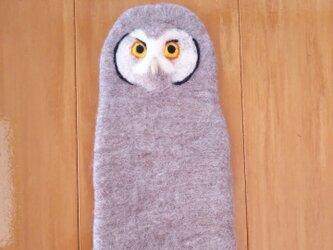 フクロウのうっかりさん(スマホ、メガネケース)の画像