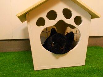 ネコ・犬ハウス(小タイプ 屋根イエロー色)2-9の画像